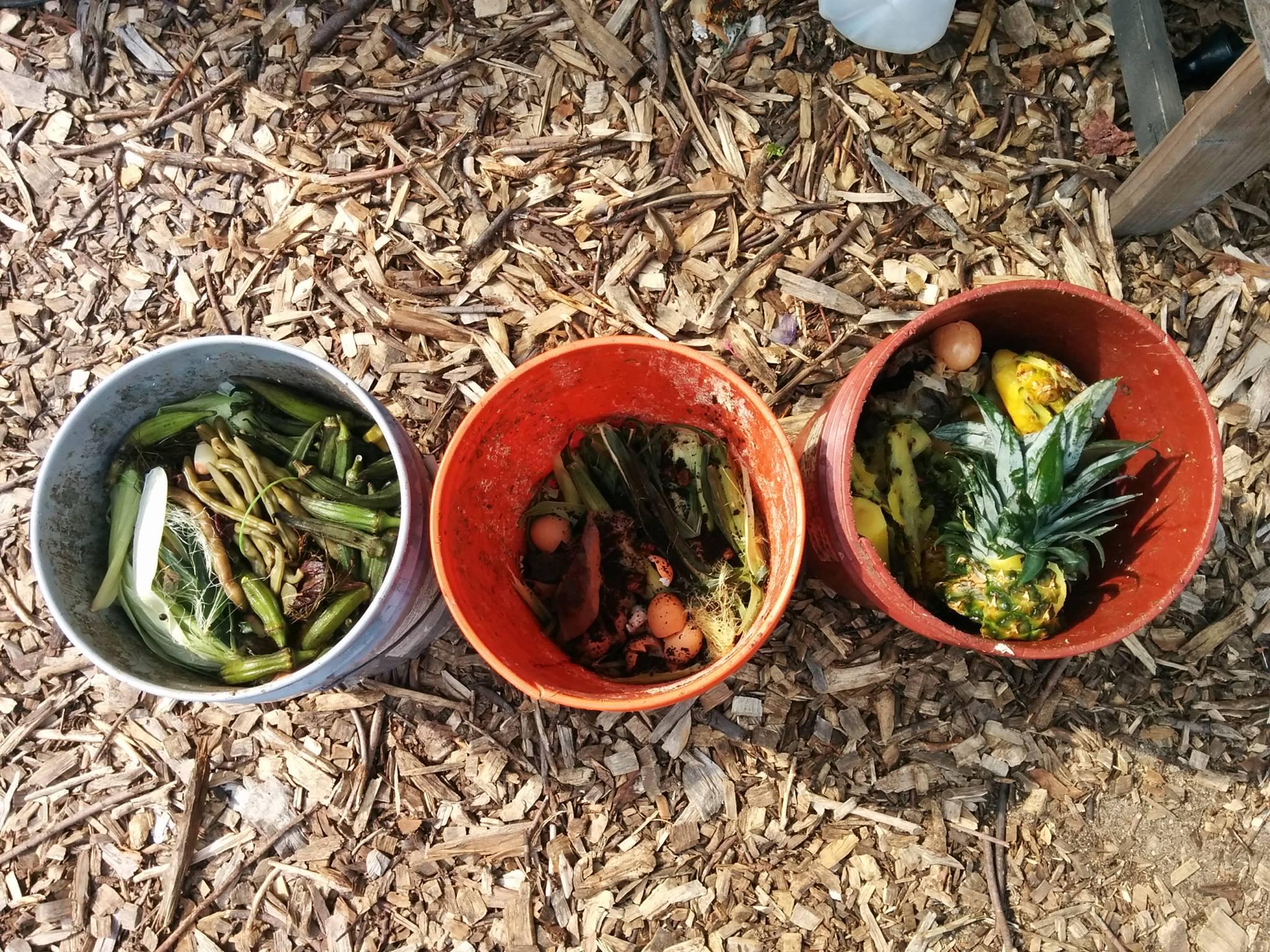 Composting – Q Gardens